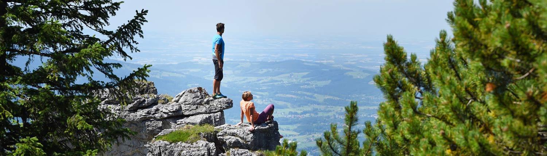 Waldness - Wellnessurlaub im Wald